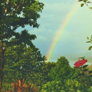 00000018 rainbow to brighten with new windows photo gallery program (2)